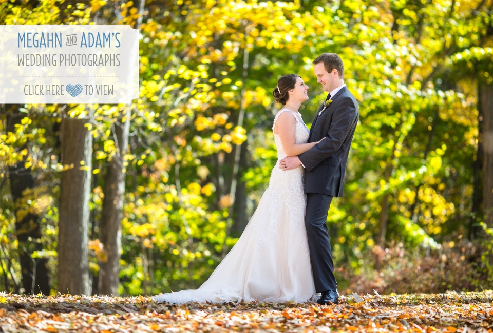 Grand Ledge Michigan Fitzgerald Park wedding photographs