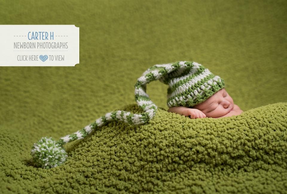 newborn baby photography Grand Ledge Michigan (14)