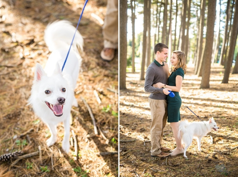 engagement photographs with a dog at MSU