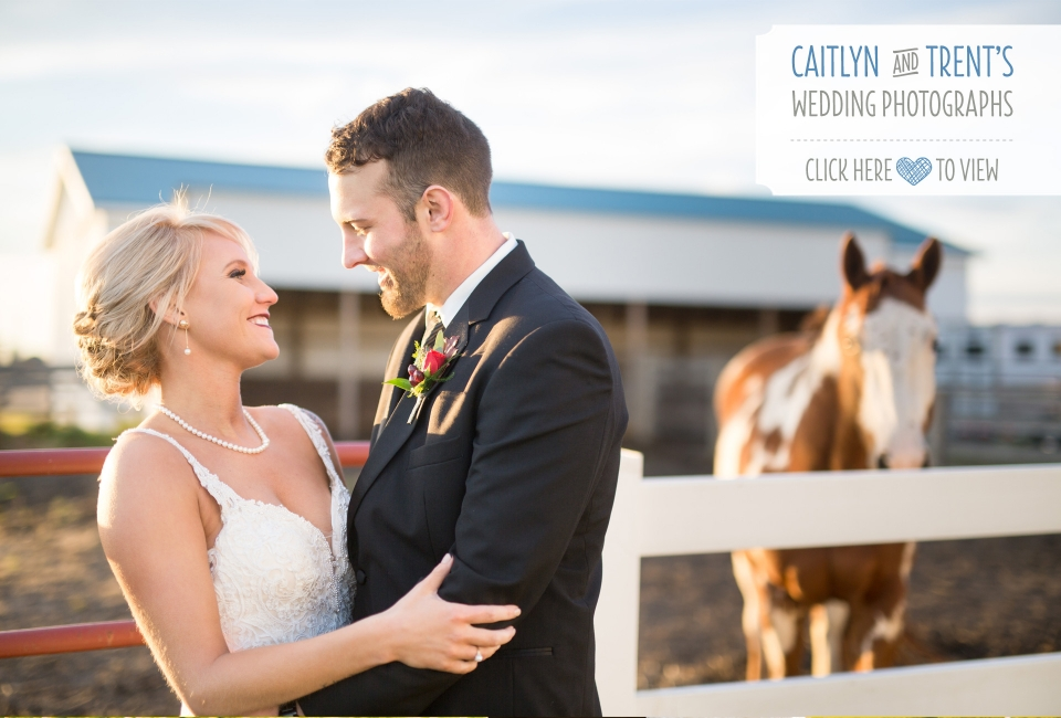 Golden Glow Ballroom wedding